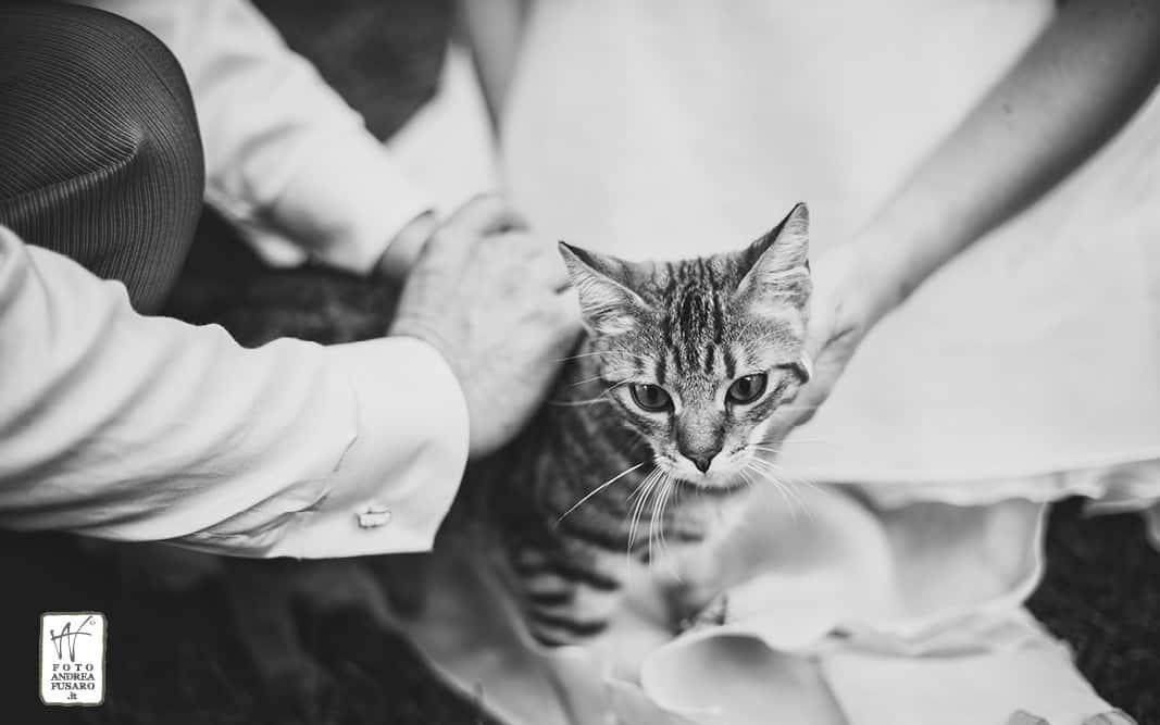 68 ritratti villa borgatti ricevimento matrimonio fotografo