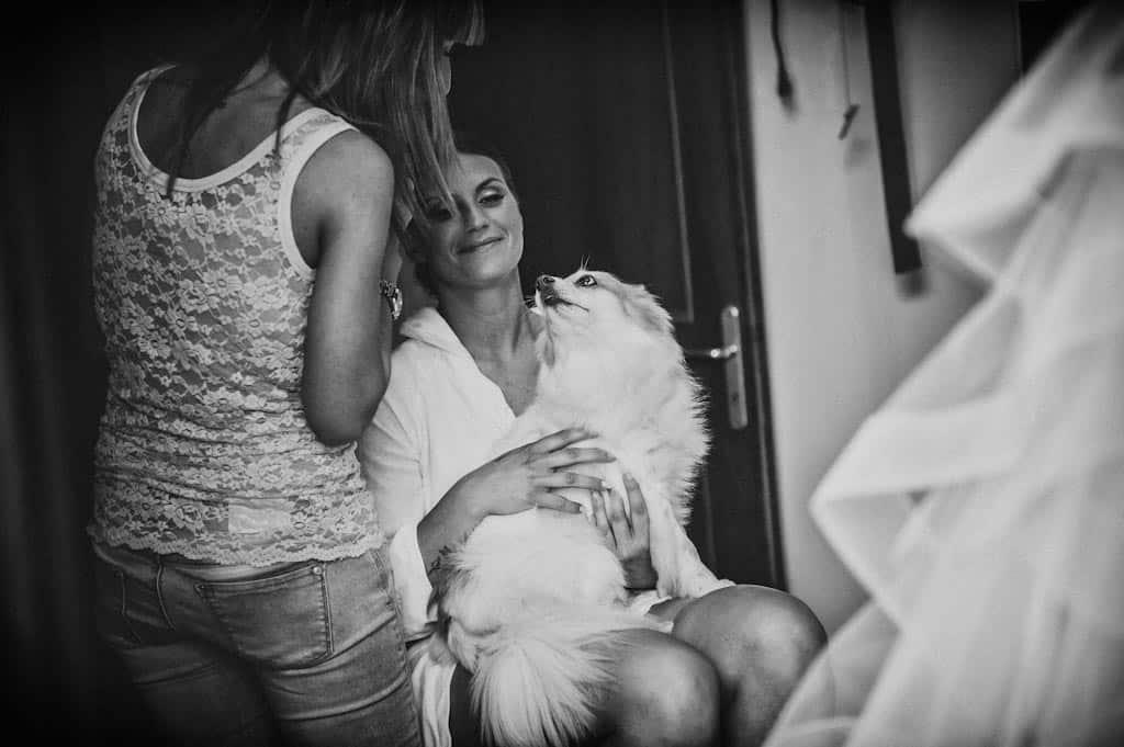 01b trucco cane sposa preparativi Erika + Davide | Rovigo   Padova