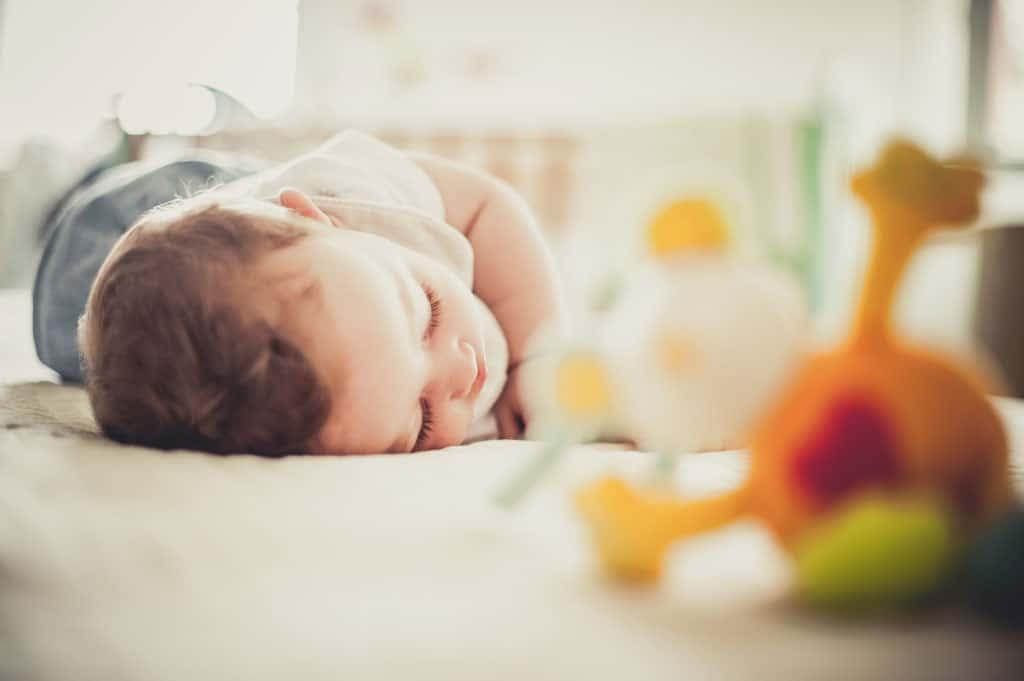 25 new born padova