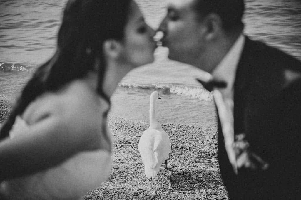 41 matrimonio lago di garda cigno Simona + Francesco | Matrimonio Lago di Garda