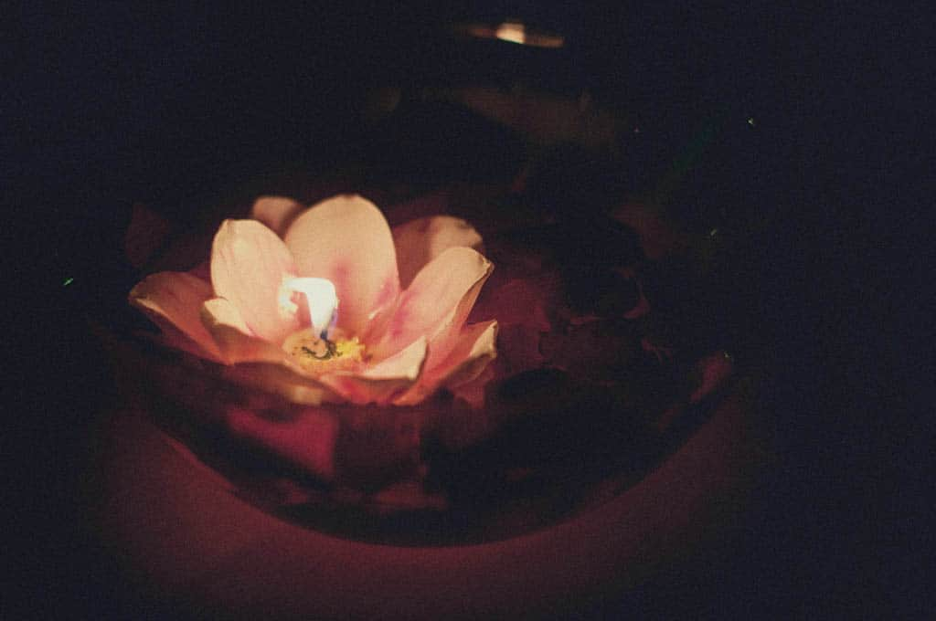 43 dettaglio fiore matrimonio Monica + Niccolò | matrimonio padova, colli euganei