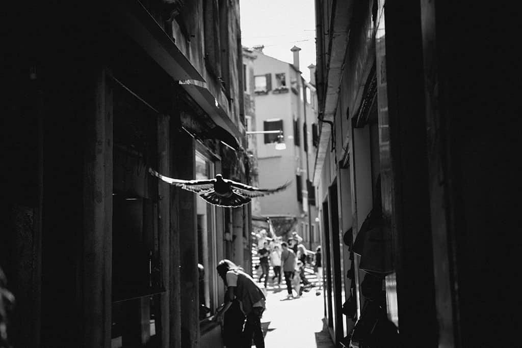 18 engagement venice venezia reportage Giulia + Luca | Engagement in Venice