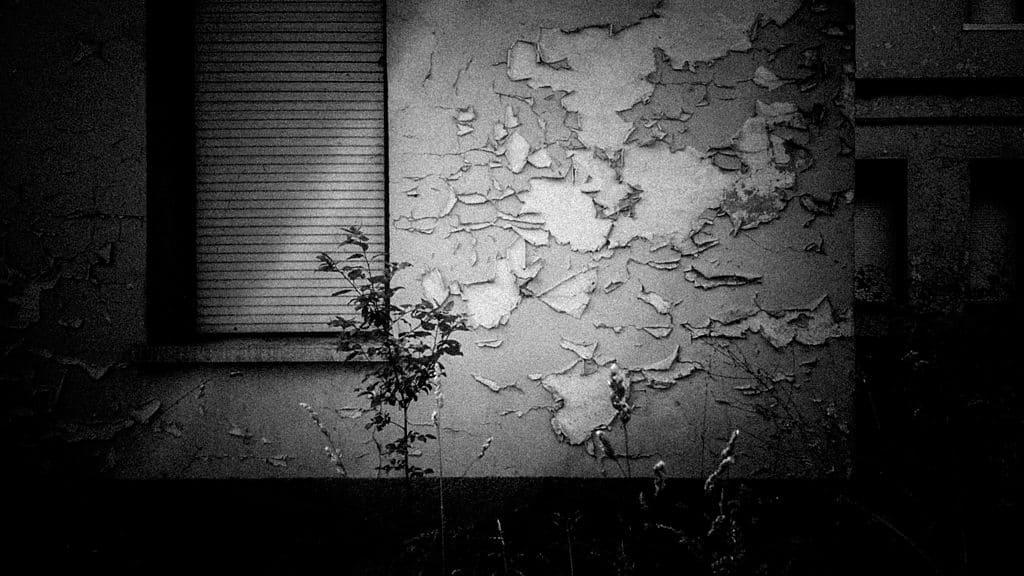 foto manicomio rovigo granzette 0011