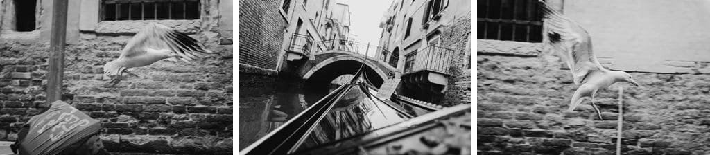 39 engagement in venice photo shooting
