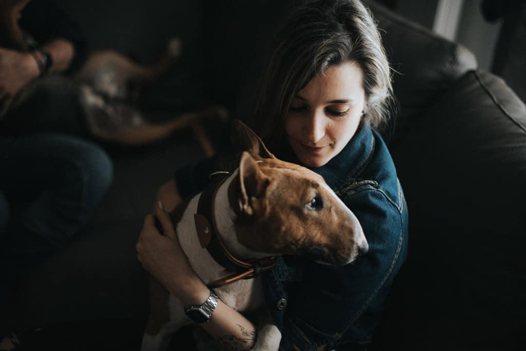 247 fotografo ritratti animali da compagnia Servizio fotografico per fidanzati   Hipster Rock, Tatuaggi e Bull Terrier