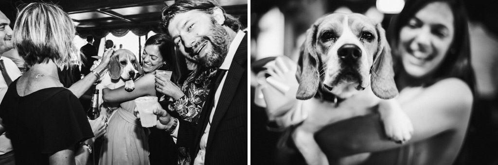 384 fotografo matrimonio a belluno Matrimonio Dolomiti   Belluno