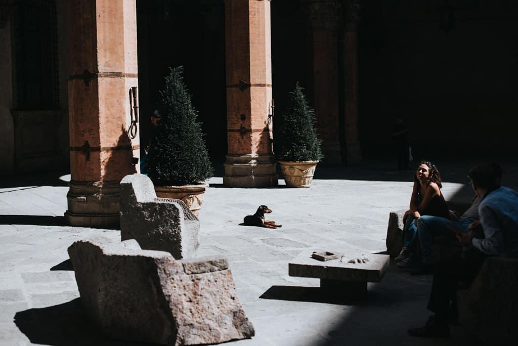 441 matrimonio in municipio a bologna